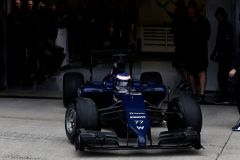 Valtteri Bottas in the Williams FW36 (Image: Williams F1 Team)
